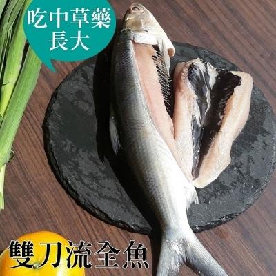 台江漁人港.草本雙刀流全魚(12兩/隻,共二隻)