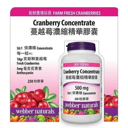 〔美式賣場〕Webber Naturals 蔓越莓濃縮精華膠囊 250 粒