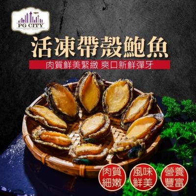 PG CITY鮮食館 新鮮急凍 帶殼鮑魚 500g 10-12顆 嚴選海鮮