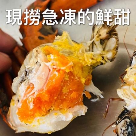 火星王子 特A紅蟳 七成卵 新鮮捕撈 即刻烹煮 超低溫急凍保鮮 一口就能品嚐鮮甜 免運送到家 8隻/組