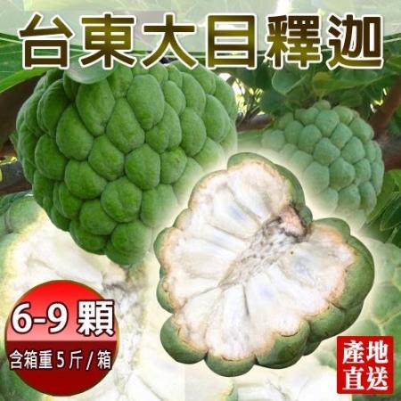 【產地直送】台東香甜好吃大目釋迦5斤含箱重6-9顆(x1箱)