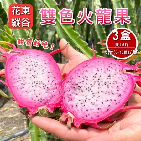 【預購-產地直送】花東縱谷特產雙色火龍果5斤8-10顆(x3盒)
