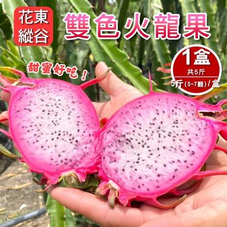 【預購-產地直送】花東縱谷特產雙色火龍果5斤5-7顆(x1盒)
