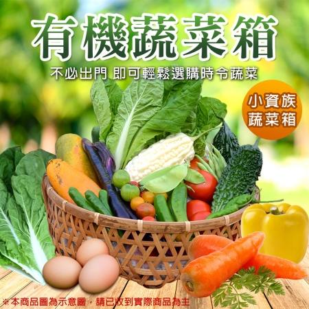 【柚果合作社】新鮮現採有機蔬果箱-小資超值組合x1箱
