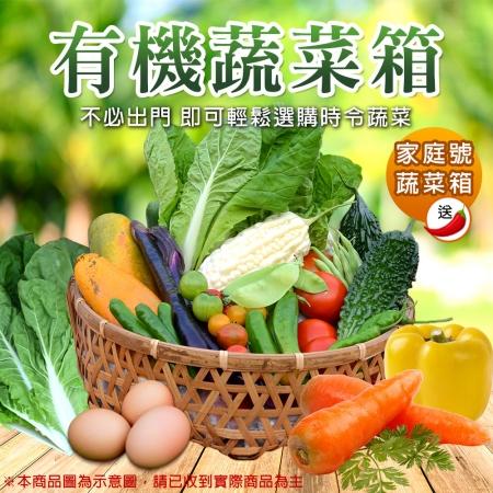 【柚果合作社】新鮮現採有機蔬果箱-家庭號組合x1箱(送辣椒)