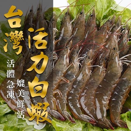 台灣活力白蝦3入組