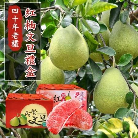【預購-產地直送】正宗台南麻豆40年老欉文旦紅柚禮盒4斤2-4顆(x2箱)