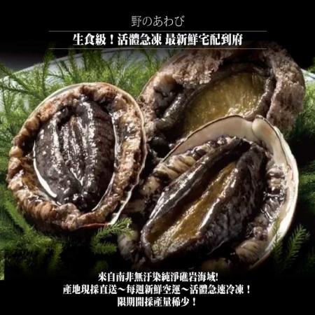 【小川漁屋】極品南非活凍帶殼鮑魚(500G+-10%/包/約6~8粒)